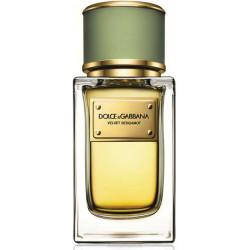 Dolce & Gabbana Velvet Collection Bergamot